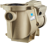Intelliflo Variable Speed Pump